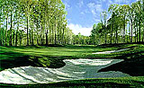 Woodlands Golf Course Design - Hole #15